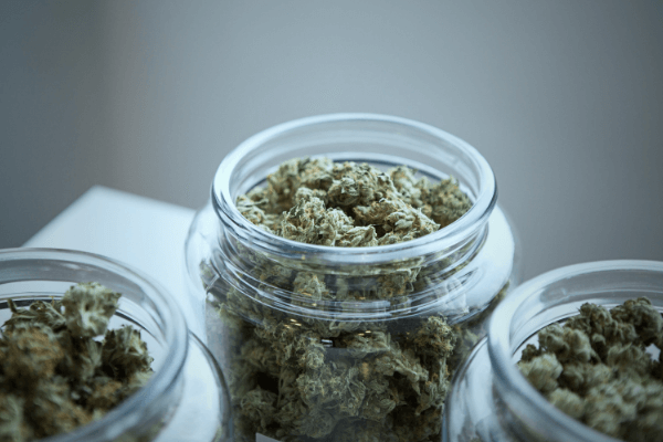 Alberta is leading the Cannabis Sector